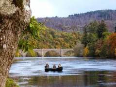 Dunkeld October 2014 009 (1)
